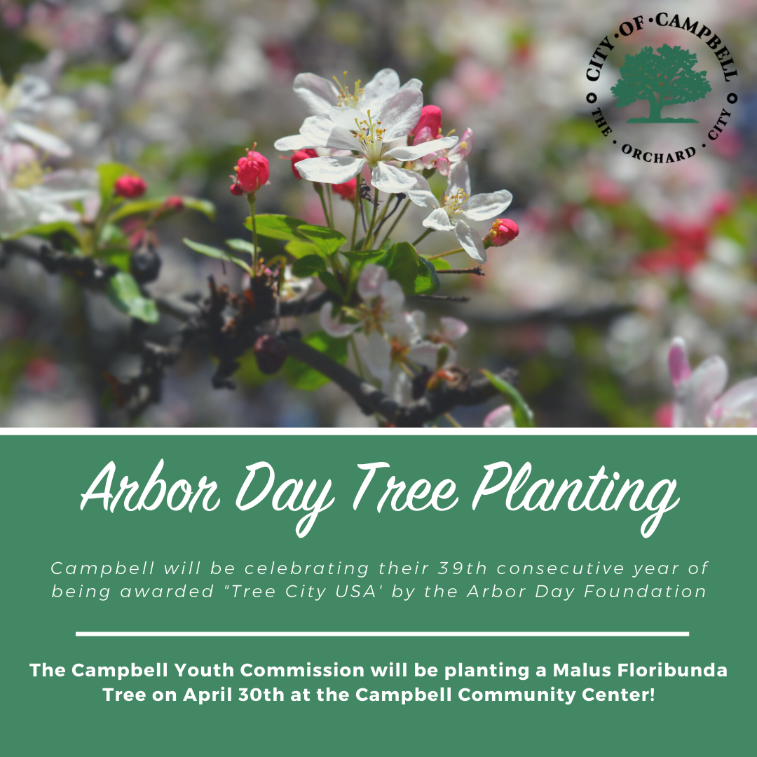 arbor day announcement