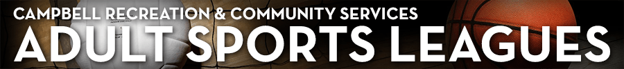 Sports - adult sports leagues header